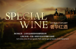 SPECIAL WINE奢华红酒